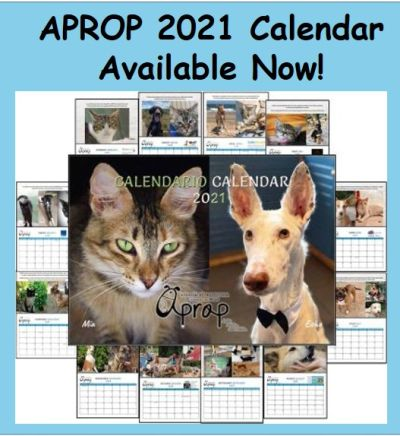 2021 Calendar Available